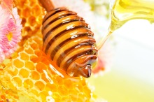 honeycomb-honey-wallpaper-4
